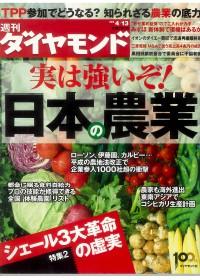 週刊ダイヤモンド 2013年4月13日号